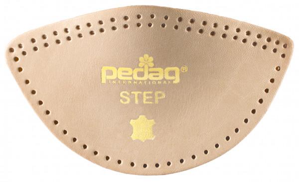 Pedag Step neu_1